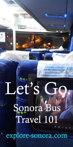 Learn to travel by bus to Sonora, Mexico